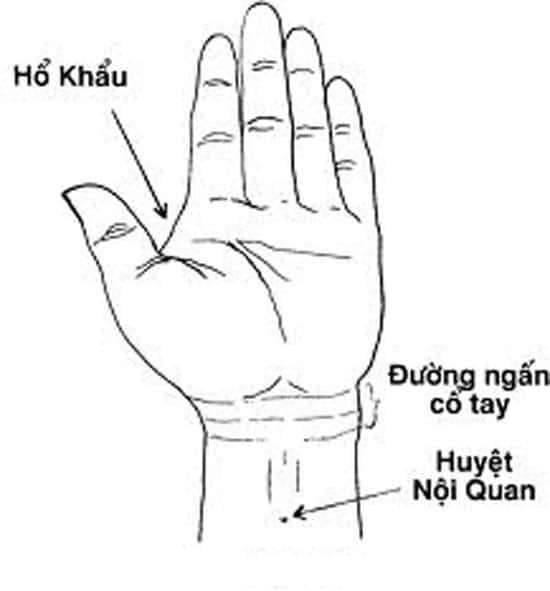 Huyệt Nội Quan